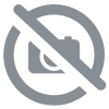 "Ceinture ""covered Wagon"""